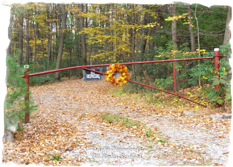 A gate color-matched and decorated for the season.