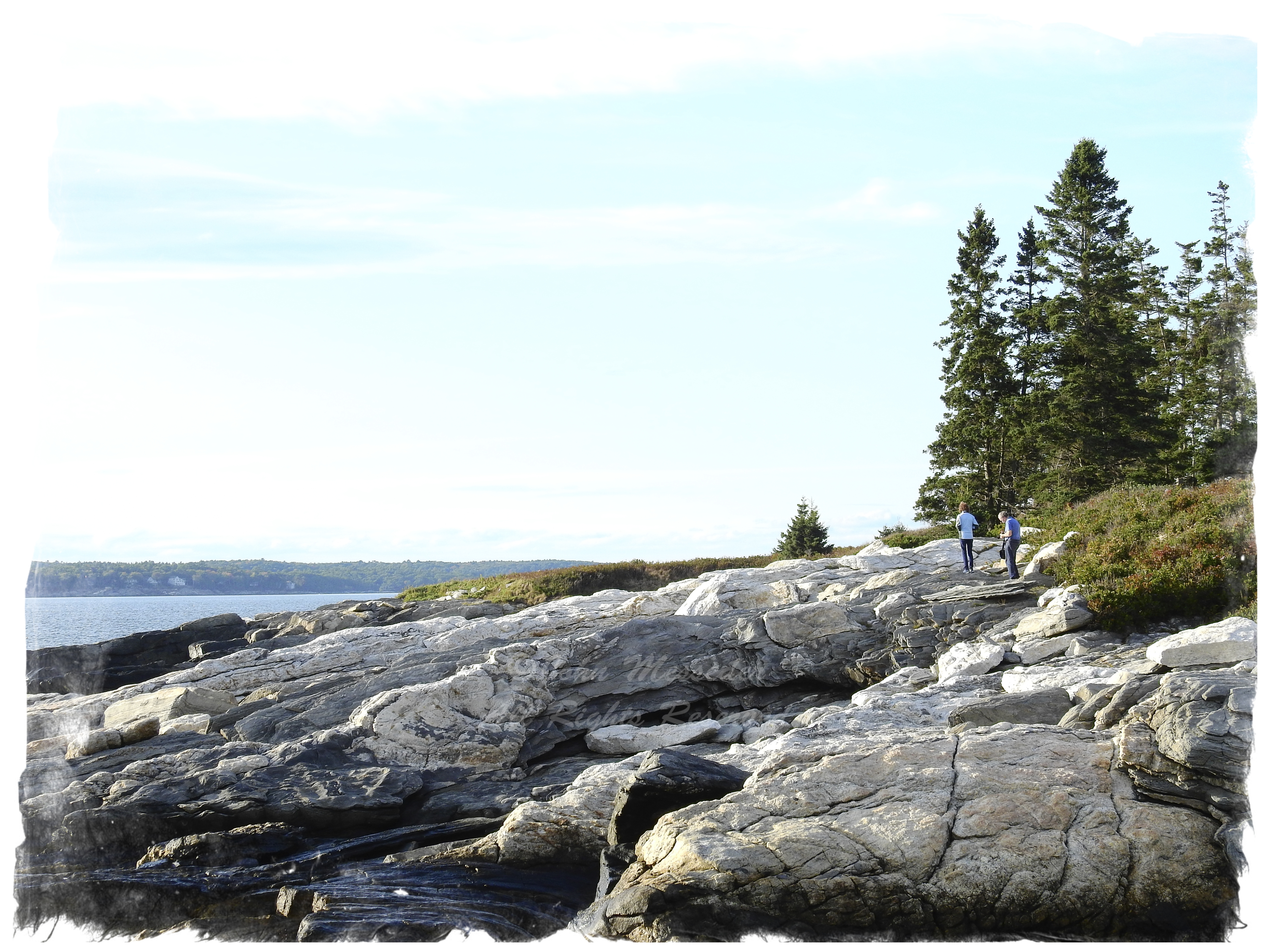 The coast of Maine is like very old chocolate, raged where it's broken off.