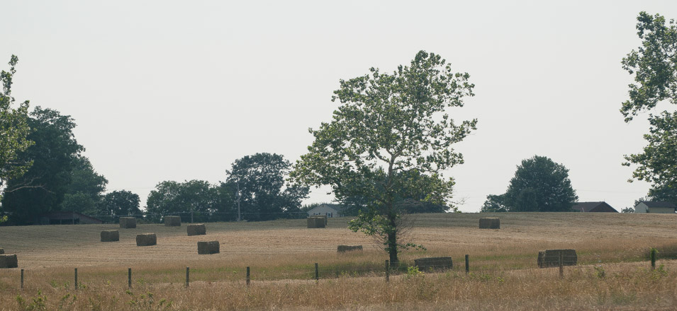 Hay fields like this are prime targets for developers who claim the new homes will increase the tax base.