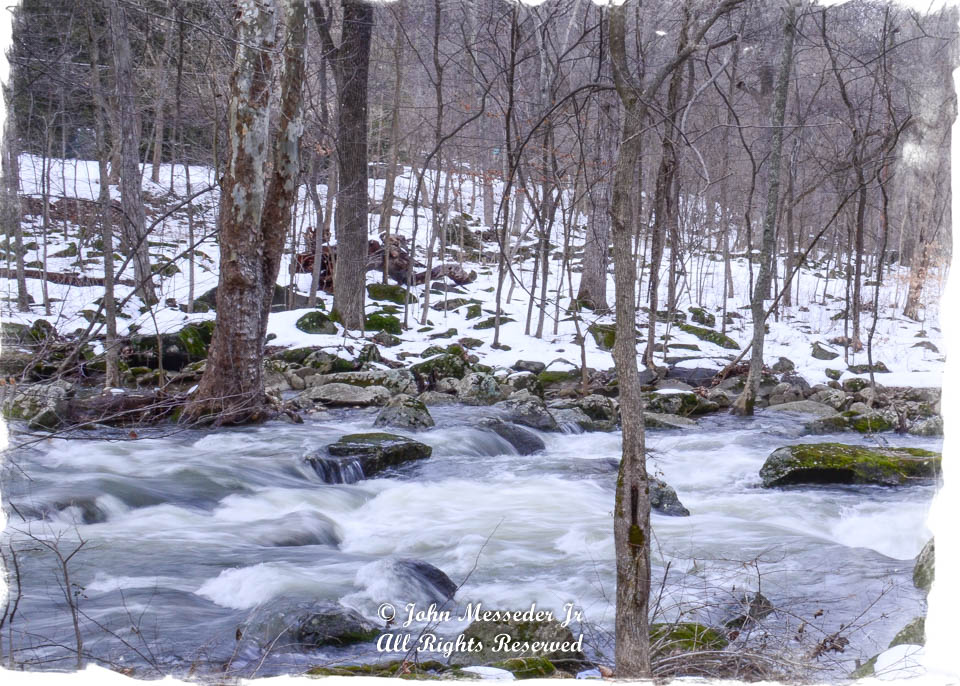 Winter stream in the woods.